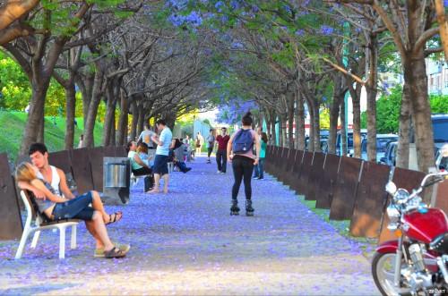 Buenos Aires_otoku
