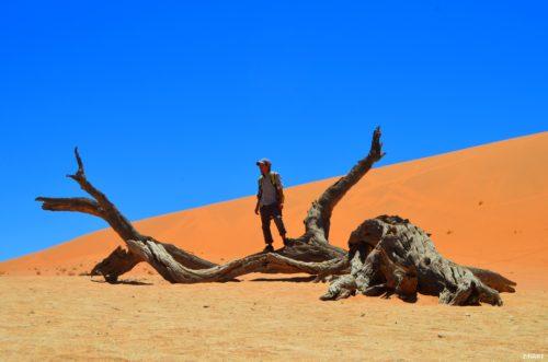 namibia_desert